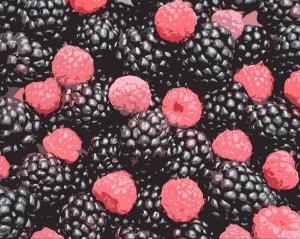 SMall blackberry raspberry cutout photoshopped