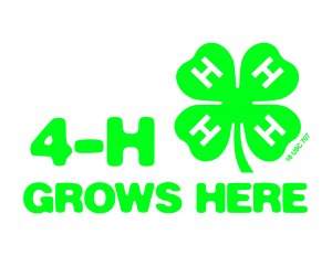 Cover photo for Congratulations 4-H Application, Resume, Interview Essay Contest Winners!