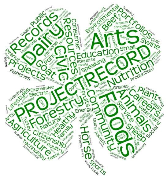Project record logo image