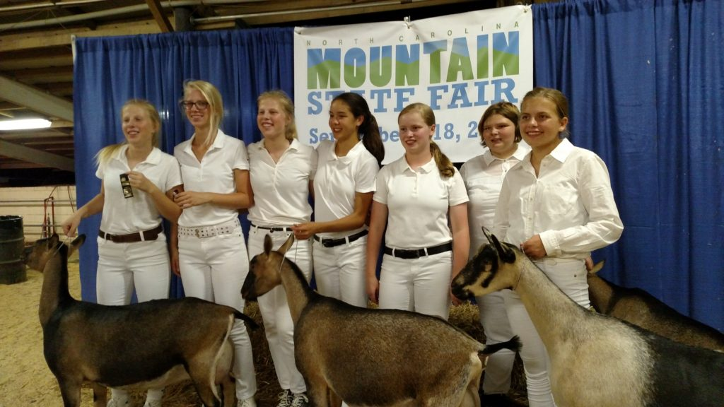 showing goats at Mountain State Fair