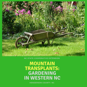 Cover photo for 2018 Mountain Transplant Home Gardening Series