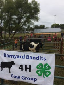 Cover photo for Henderson County Agents Talk About Farm City Day on WTZQ