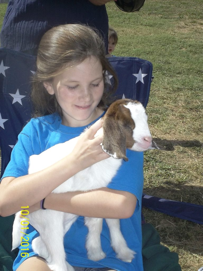 girl holding a small goat