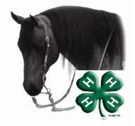 Cover photo for West Qualifying 4-H Horse Show and WNC Open Horse Show, May 5 and 6