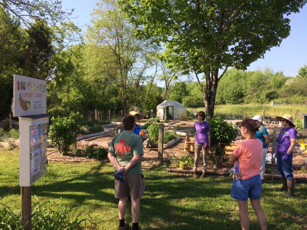 Image of Master Gardener volunteers