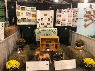 booth for Mountain State Fair