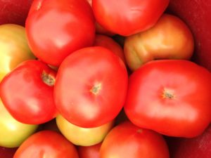 Image of a tomato