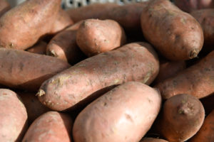 Cover photo for Renewal of Section 18 Label for Use of Mertect (Thiabendazole) in Sweetpotato Postharvest for Black Rot Control in Domestic Markets Has Been Approved