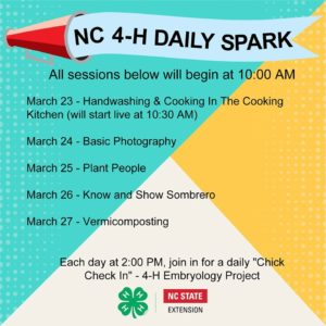 Cover photo for N.C. 4-H Daily Spark