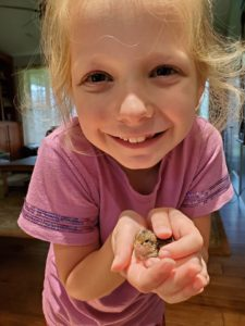 child holding baby quail