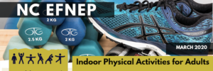 Cover photo for Indoor Physical Activities for Adults