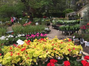 Raymonds Garden Center
