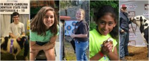 Cover photo for Celebrating Our 4-H Seniors!