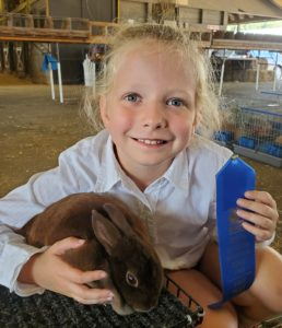 Cover photo for WNC Youth Livestock Expo