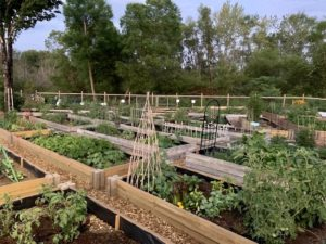 Cover photo for Henderson County Bountiful Harvest Community Garden 2020