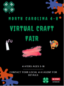 Cover photo for NC 4-H Virtual Craft Fair!