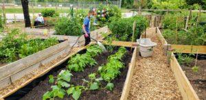 Bountiful Harvest Community Garden