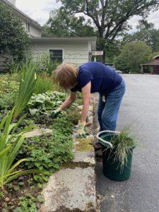 Volunteer working in garden