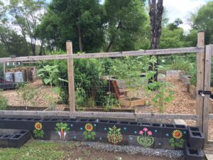Cover photo for Bountiful Harvest Community Garden Born in Cooperative Extension