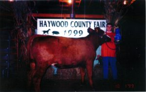 Jeremy Taylor with his blue ribbon Simmenthal at the Haywood County Fair in 1999.