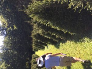 camp tree farm