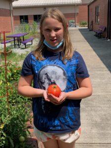 Cover photo for Dana Elementary School Garden