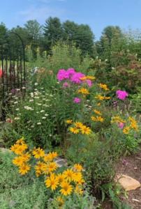 Flat Rock Pollinator Garden August 2021